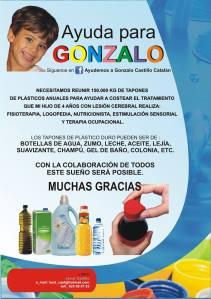Tapones para Gonzalo